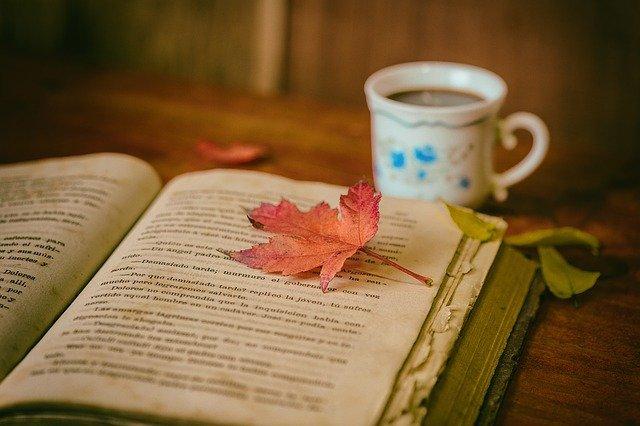 reading hobby